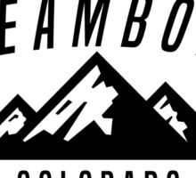 STEAMBOAT SPRINGS COLORADO Mountain Skiing Ski Snowboard Snowboarding STICKER DECAL Sticker