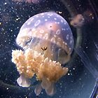 Jellyfish by Julie Anne