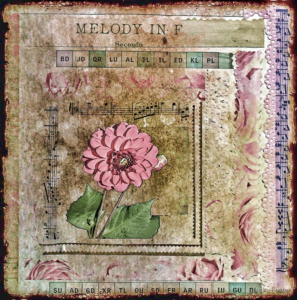 Dahlia in Melody F by Sandra Foster