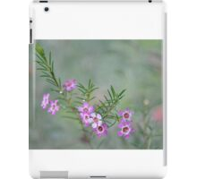 Nature in the front yard iPad Case/Skin
