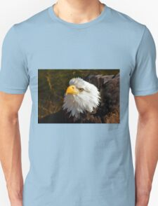 Bald Eagle in Splendor Unisex T-Shirt