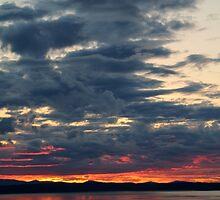 Daybreak Star Sky by Shannon Kringen