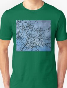 Graceful Lace in the Sky - Mimosa Leaves and Buds Against Dusk Clouds - Horizontal View Upwards Left Unisex T-Shirt