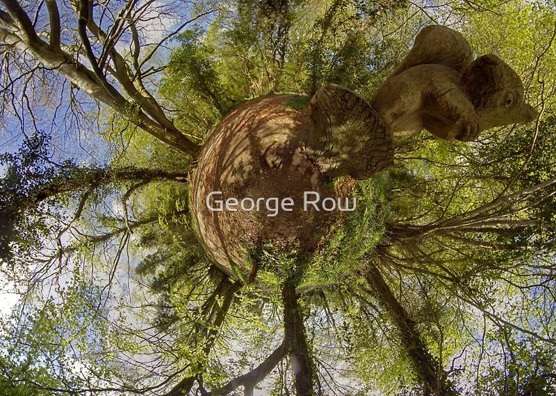 Squirrel Sculpture on path through Prehen Woods,  Derry by George Row
