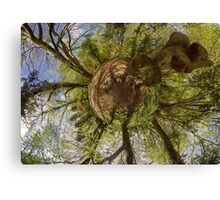 Squirrel Sculpture on path through Prehen Woods,  Derry Canvas Print