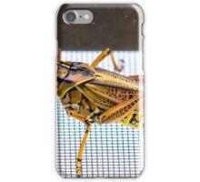 One Impressive Grasshopper iPhone Case/Skin