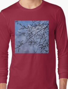 Graceful Lace in the Sky - Mimosa Leaves and Buds Against Dusk Clouds - Horizontal View Downwards Right Long Sleeve T-Shirt