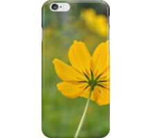 Yellow Star - Flower daisy iPhone Case/Skin