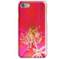 Epiphyllum Cactus - Flower pink iPhone Case/Skin
