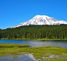 Reflection Lakes/Mt. Rainier by kchase