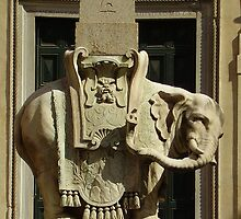 The Elephant by LizzPhotography