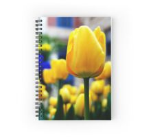 Tulips (Horizontal) Spiral Notebook