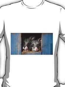 """""""Poppy & Ivy"""" Brushtail Possums T-Shirt"""