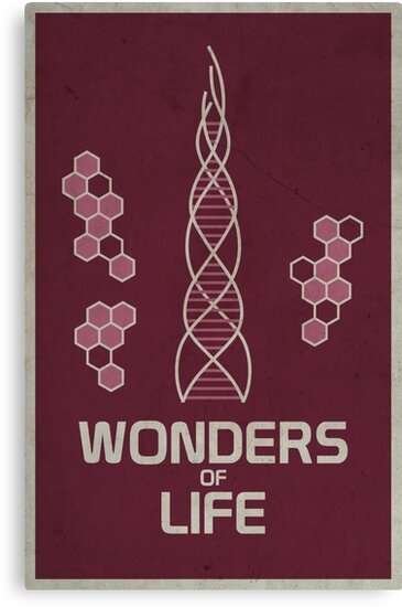Wonders of Life by scbb11Sketch