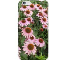 Echinacea Healing iPhone Case/Skin