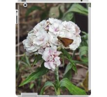 One On The Sweet William                              Pentax X-5 16 MP iPad Case/Skin