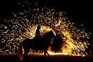 Ring of fire by Brian Edworthy
