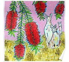 Kangaroos with Bottlebrush Poster