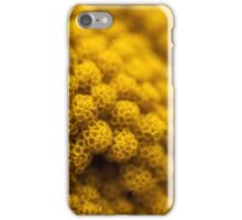 Not Cauliflower iPhone Case/Skin