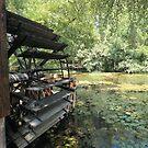 Vizimalom (watermill) by zumi