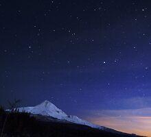 Stars over Mt Hood.  by Bill Lane