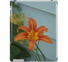 The Single Tiger Lilly                                Pentax X-5 16 MP iPad Case/Skin