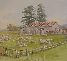 Shearing Shed at Clarence Point by Wendy Dyer