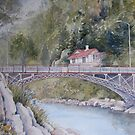 Cataract Gorge by Muriel Sluce by Wendy Dyer