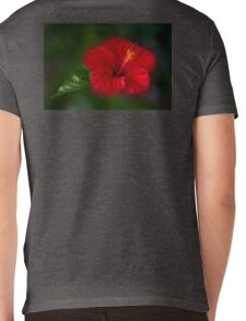 Red and green Mens V-Neck T-Shirt
