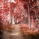 Autumn in a surreal place by flexigav