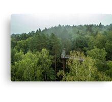Walkway above the forest Canvas Print