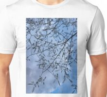 Graceful Lace in the Sky - Mimosa Leaves and Buds Against Dusk Clouds - Vertical View Downwards Right Unisex T-Shirt