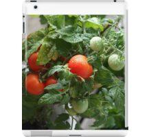 Urban Gardening iPad Case/Skin