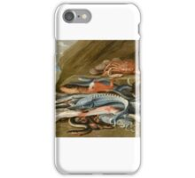 Jan van Kessel the Elder, attributed to, Still Life with Fish, a Crab and a Cat,  iPhone Case/Skin