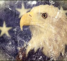 Land Of The Free by Carla Jensen