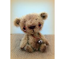 Handmade bears from Teddy Bear Orphans - Nuno Photographic Print
