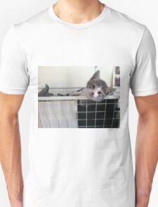 Adopted Kitten's New Snuggle Spot Unisex T-Shirt
