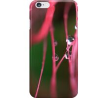 Droplet on Bottlebrush iPhone Case/Skin