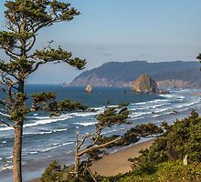 Cannon Beach View by mspixvancouver