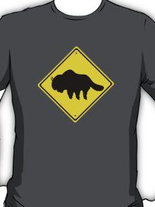 Appa Xing T-Shirt