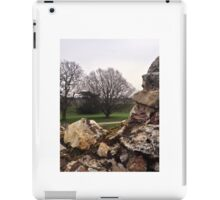 Trees from Castle Wall iPad Case/Skin