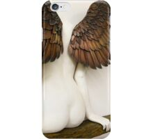 Icarus Had a Sister - detail iPhone Case/Skin