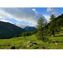 Wooded slopes Photographic Print