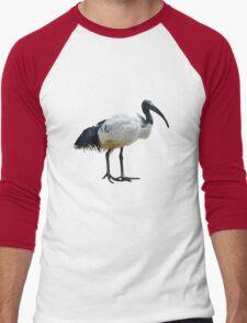 Neutral Ibis  Men's Baseball ¾ T-Shirt