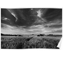 Across the fields from Marsham Poster