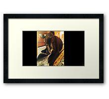 naughty dog Framed Print