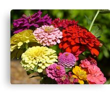 Picked flowers Canvas Print