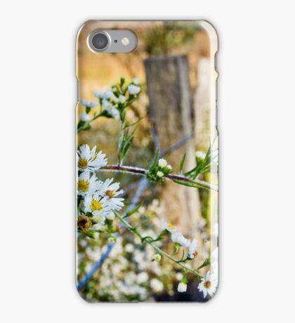 Along A Fence Row iPhone Case/Skin