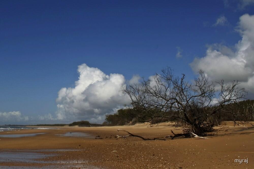On the Beach by myraj