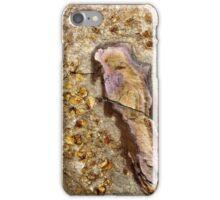 Bird in the rock iPhone Case/Skin